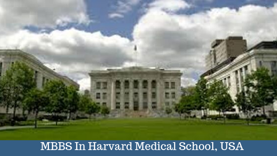 Study MBBS In Harvard Medical School, USA